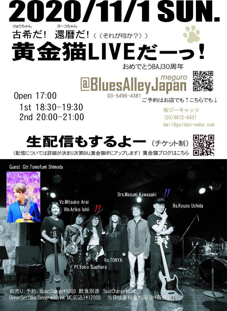 黄金猫 ライブ @ ブルースアレイジャパン | 目黒区 | 東京都 | 日本